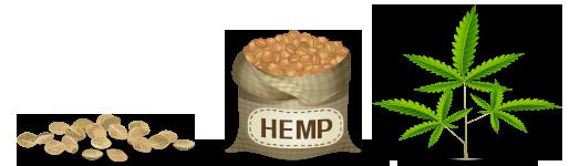 National Hemp Exchange